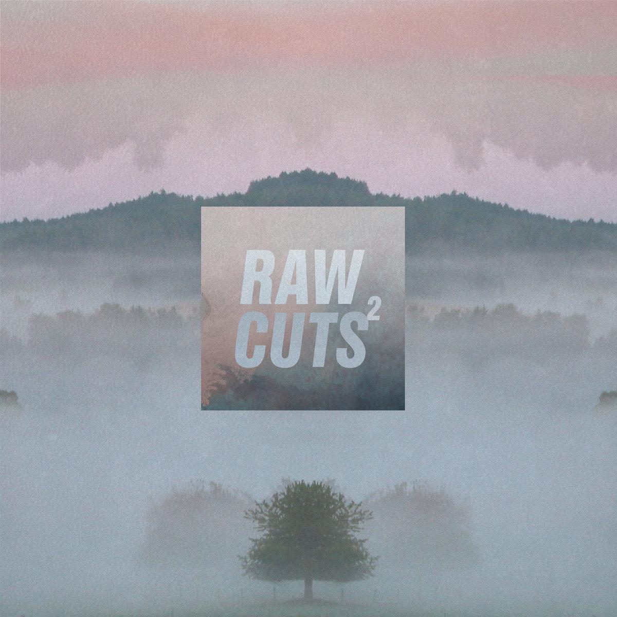 Chillhop Raw Cuts2