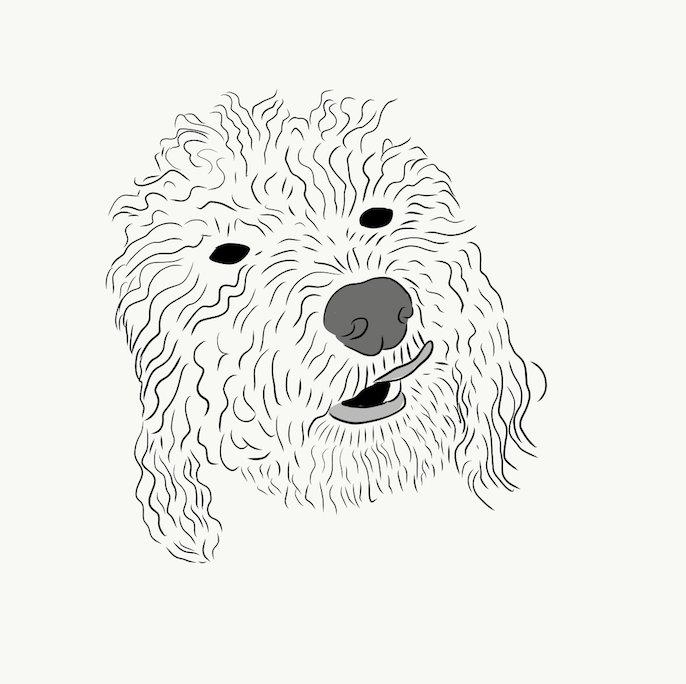 Oatmello – Oliver