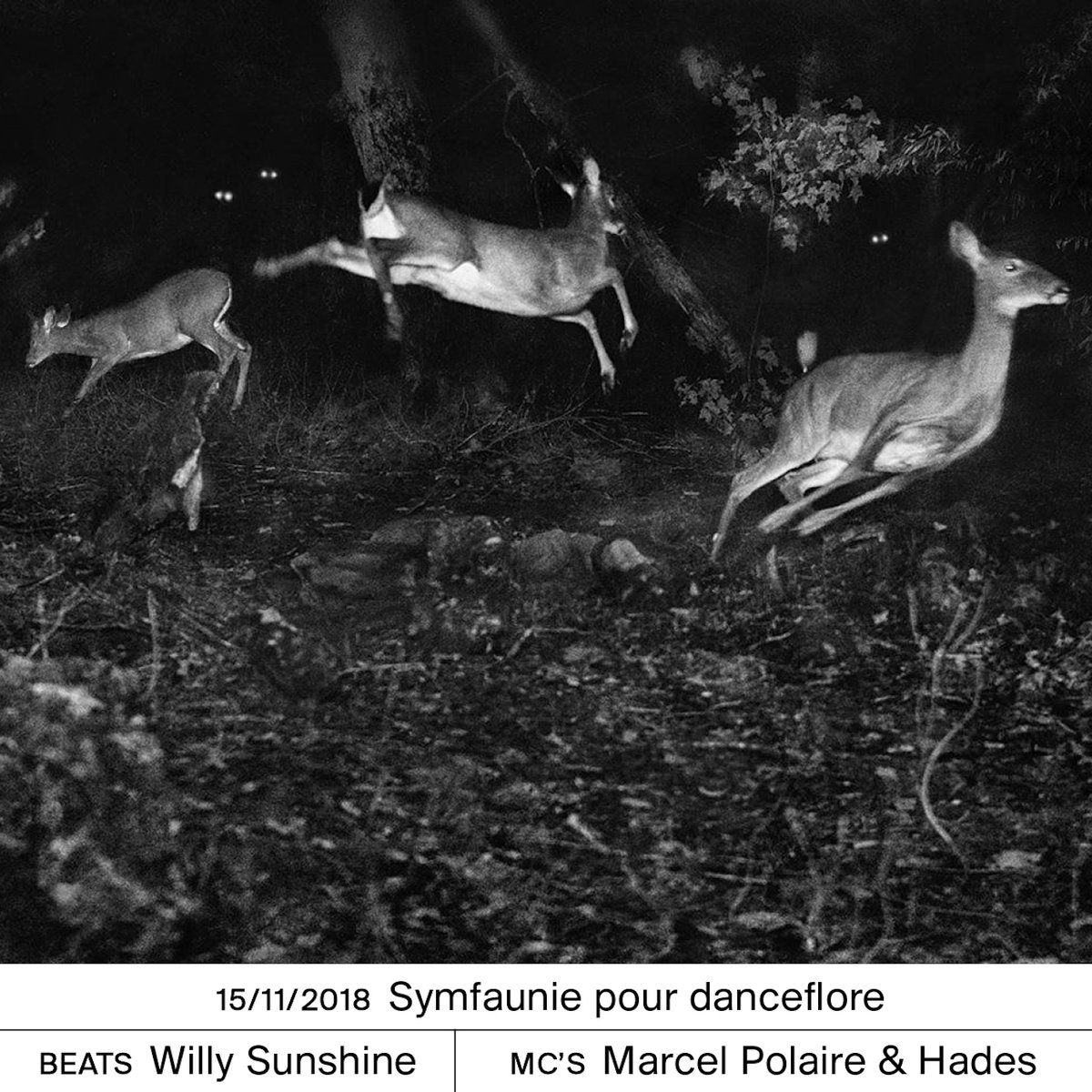 MARCEL POLAIRE & HADES – Symfaunie pourdanceflore